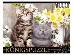 Konigspuzzle. ПАЗЛЫ 1000 элементов. ШТK1000-0647 КОТЯТА В ВЕСЕННИХ ЦВЕТАХ