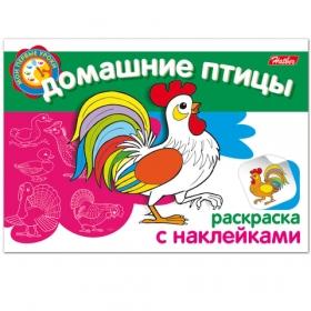 Книжка-раскраска А5 4л. HATBER с наклейками, Мои первые уроки, Домаш. птицы, 4Р5н_05825(R002699) 103