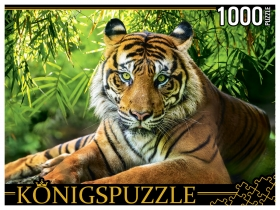 Konigspuzzle. ПАЗЛЫ 1000 элементов. ГИK1000-0649 БЛАГОРОДНЫЙ ТИГР