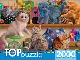 TOPpuzzle. ПАЗЛЫ 2000 элементов. ХТП2000-1596 Смешные котята в зоомагазине